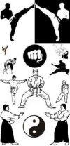 Боевые искусства и единоборства Йошкар-Олы